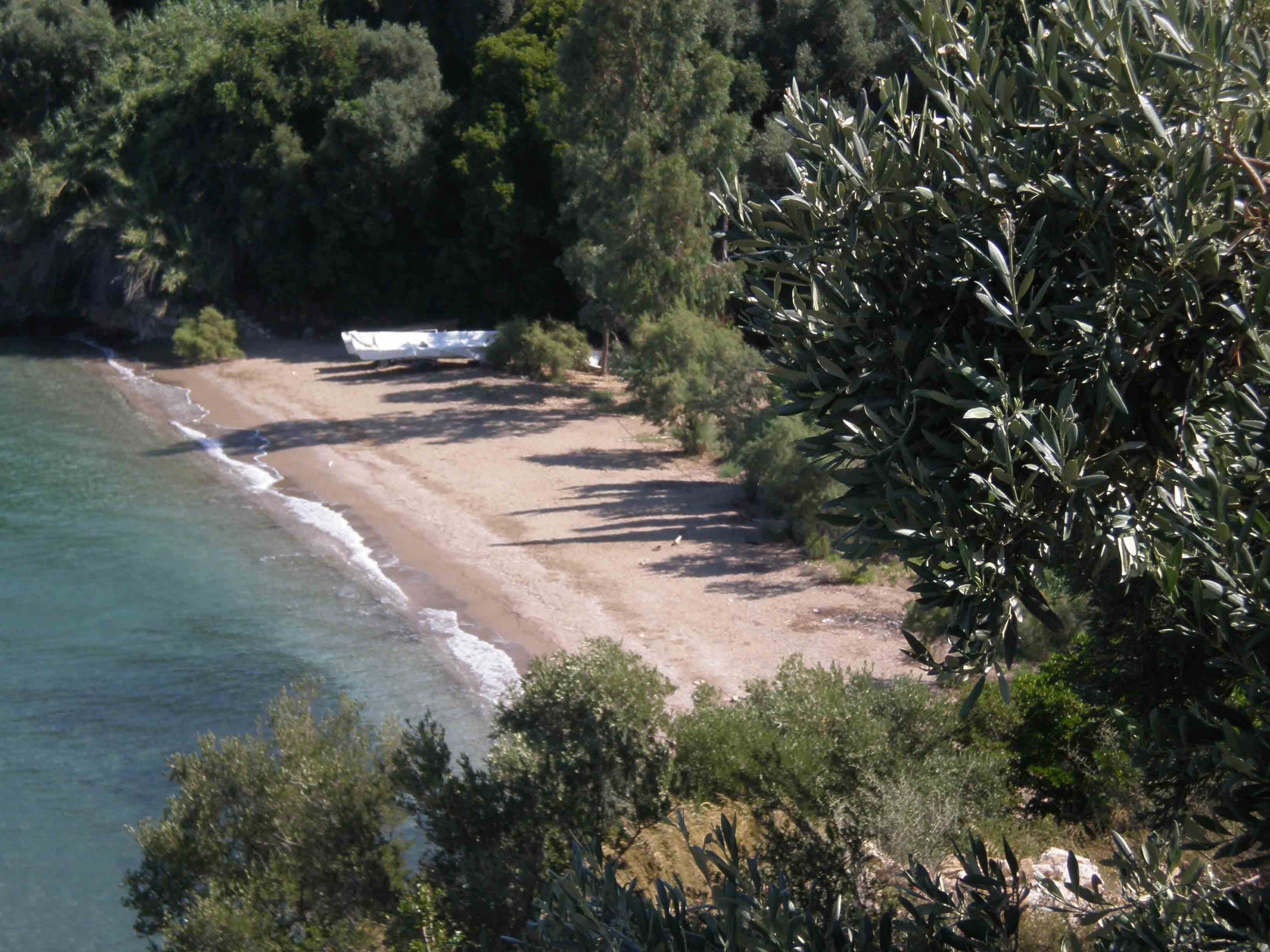 The beach below the house